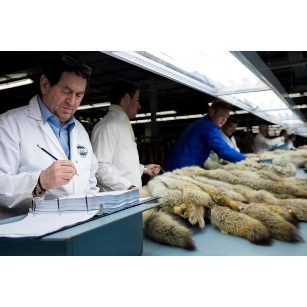 Ứng dụng máy hút ẩm trong việc bảo quản đồ lông thú