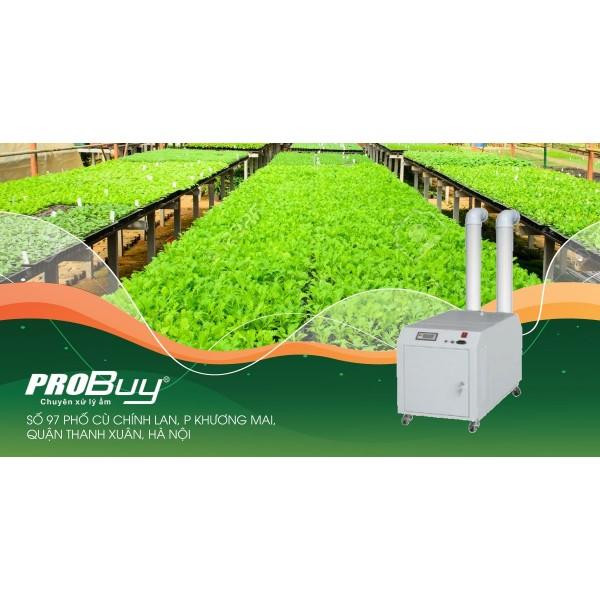 Máy phun sương tạo ẩm - giải pháp cấp ẩm hiệu quả và tiết kiệm